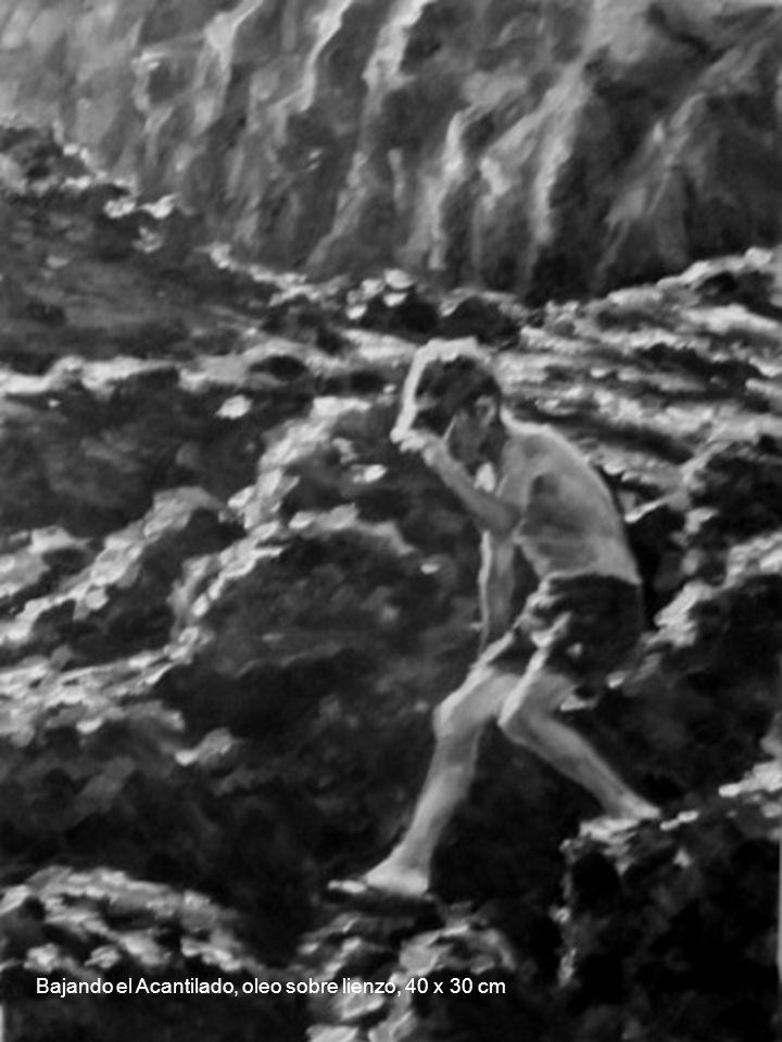 Bajando el Acantilado, oleo sobre lienzo, 40 x 30 cm