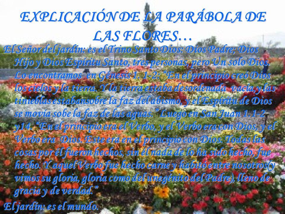 EXPLICACIÓN DE LA PARÁBOLA DE LAS FLORES… El Señor del jardín: es el Trino Santo Dios: Dios Padre; Dios Hijo y Dios Espíritu Santo, tres personas, per