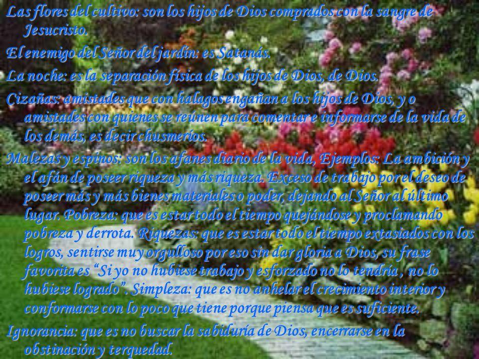 Las flores del cultivo: son los hijos de Dios comprados con la sangre de Jesucristo. El enemigo del Señor del jardín: es Satanás. La noche: es la sepa