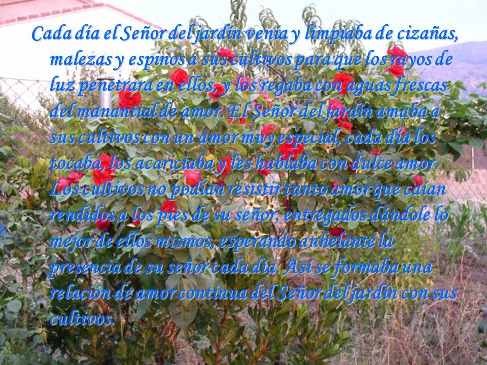 Cada día el Señor del jardín venía y limpiaba de cizañas, malezas y espinos a sus cultivos para que los rayos de luz penetrara en ellos, y los regaba