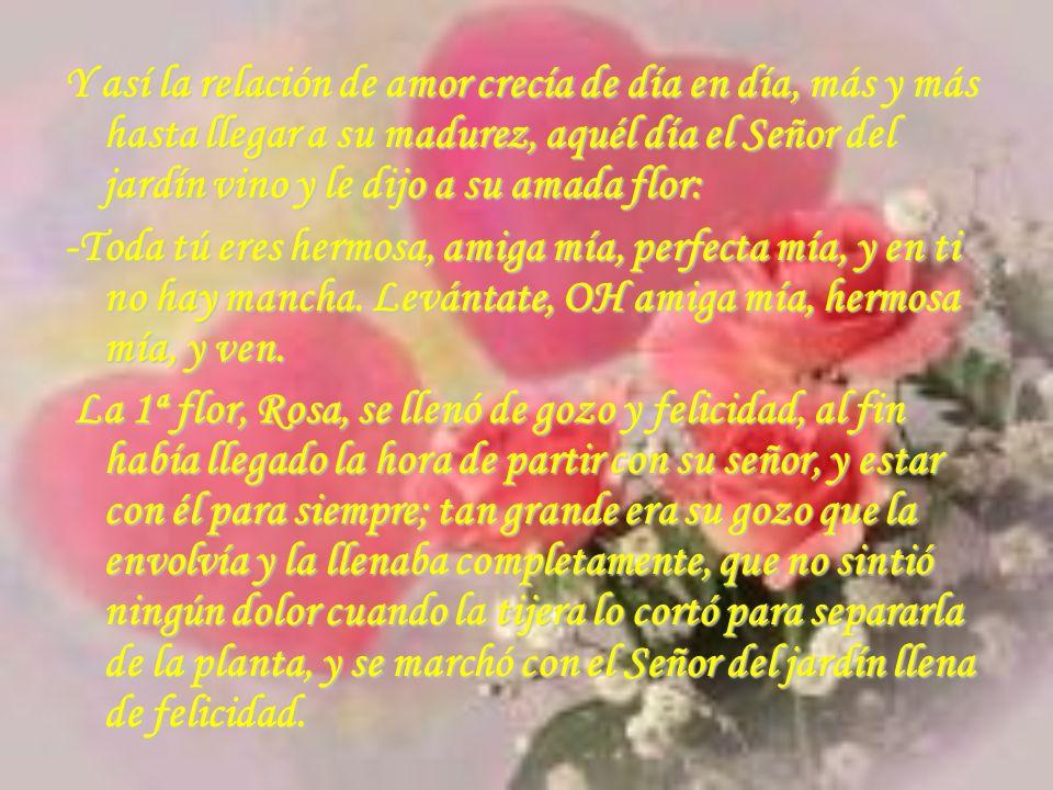 Y así la relación de amor crecía de día en día, más y más hasta llegar a su madurez, aquél día el Señor del jardín vino y le dijo a su amada flor: -To