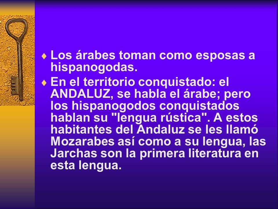 Los árabes toman como esposas a hispanogodas. En el territorio conquistado: el ANDALUZ, se habla el árabe; pero los hispanogodos conquistados hablan s