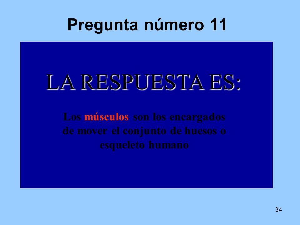 33 LAS RESPUESTAS CORRECTAS CORRECTASSON: 1V4V 2F5V 3F6V