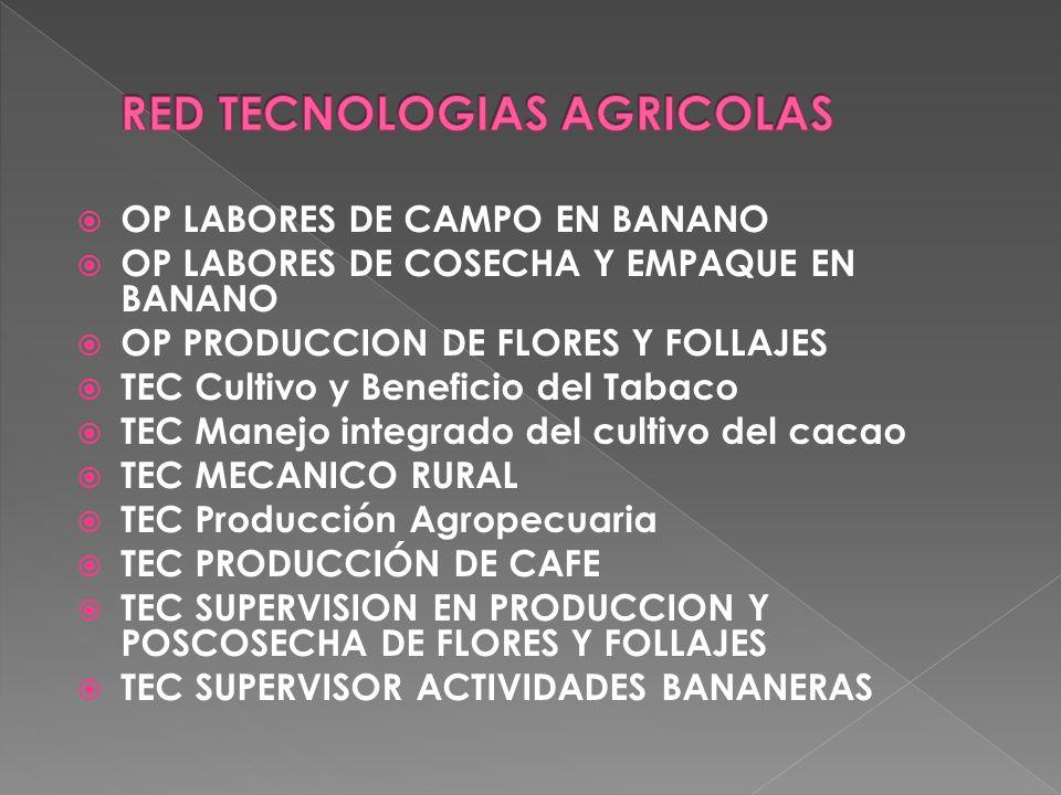 TE Cultivo y Cosecha de la Palma de Aceite TE Operación de Alzadora y Cosechadora TG ADMINISTRACION DE EMPRESA AGROPECUARIAS TG Administración de Empresas Bananeras TG En el Proceso de Fabricación de Azúcar