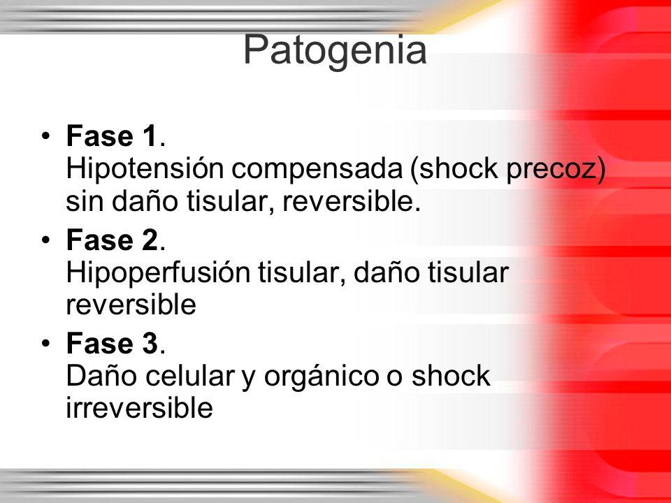 Patogenia Fase 1. Hipotensión compensada (shock precoz) sin daño tisular, reversible. Fase 2. Hipoperfusión tisular, daño tisular reversible Fase 3. D