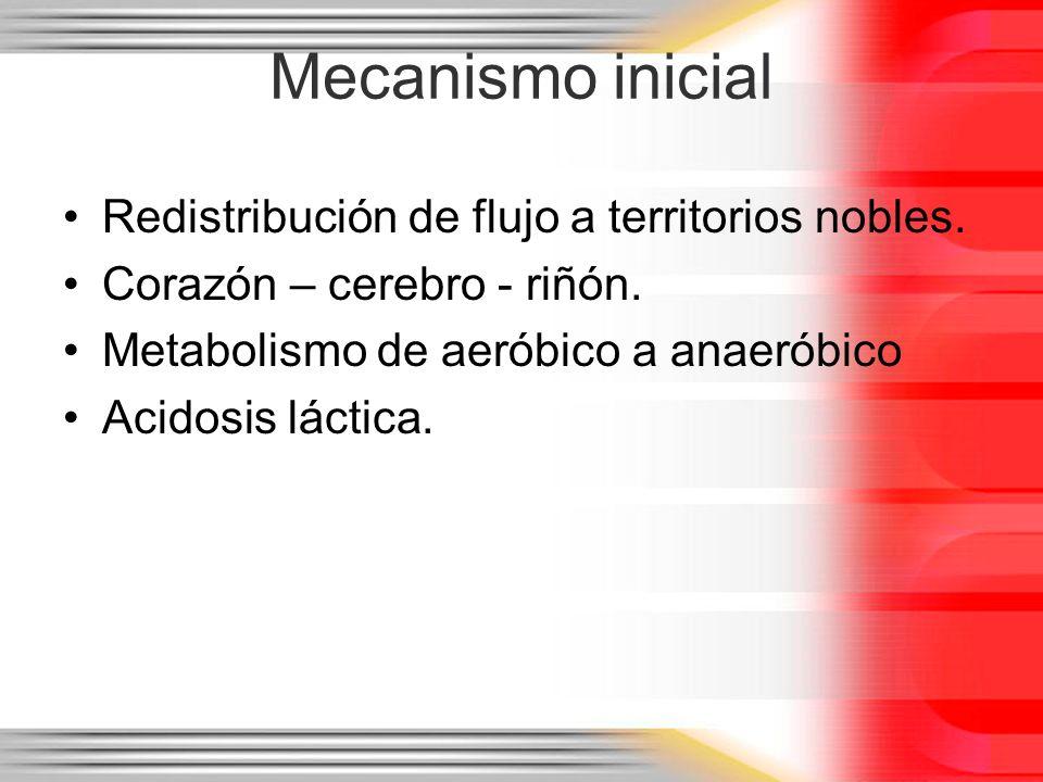 Mecanismo inicial Redistribución de flujo a territorios nobles. Corazón – cerebro - riñón. Metabolismo de aeróbico a anaeróbico Acidosis láctica.