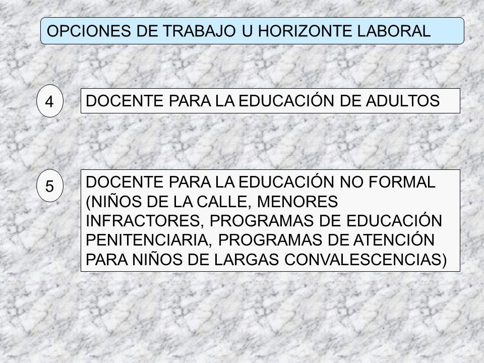 OPCIONES DE TRABAJO U HORIZONTE LABORAL DOCENTE PARA LA EDUCACIÓN DE ADULTOS 4 DOCENTE PARA LA EDUCACIÓN NO FORMAL (NIÑOS DE LA CALLE, MENORES INFRACT