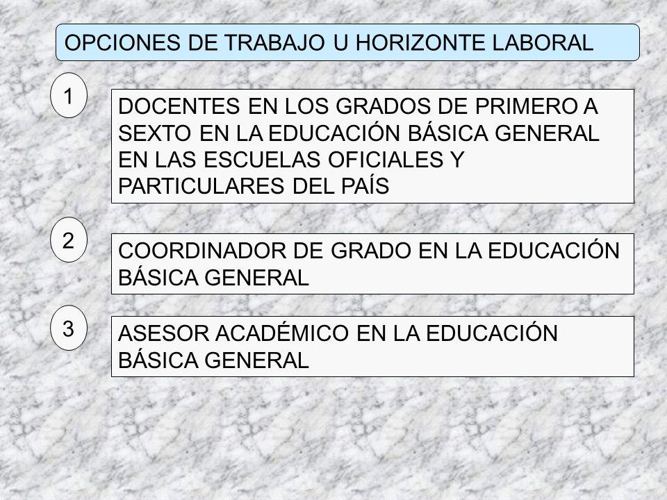 OPCIONES DE TRABAJO U HORIZONTE LABORAL DOCENTES EN LOS GRADOS DE PRIMERO A SEXTO EN LA EDUCACIÓN BÁSICA GENERAL EN LAS ESCUELAS OFICIALES Y PARTICULA