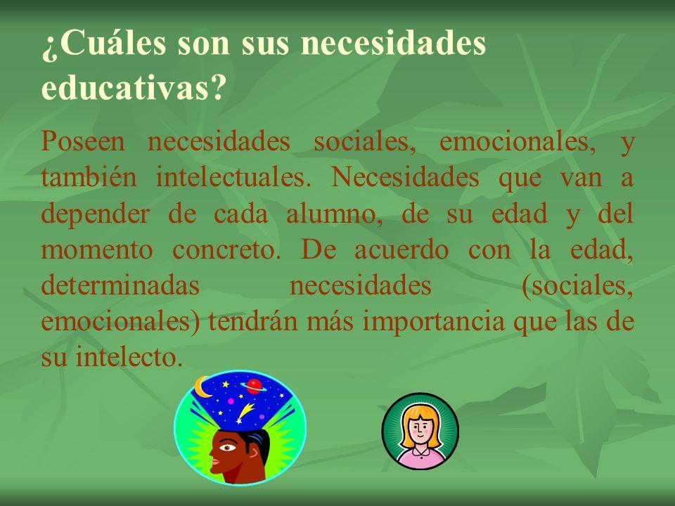 ¿Cuáles son sus necesidades educativas? Poseen necesidades sociales, emocionales, y también intelectuales. Necesidades que van a depender de cada alum