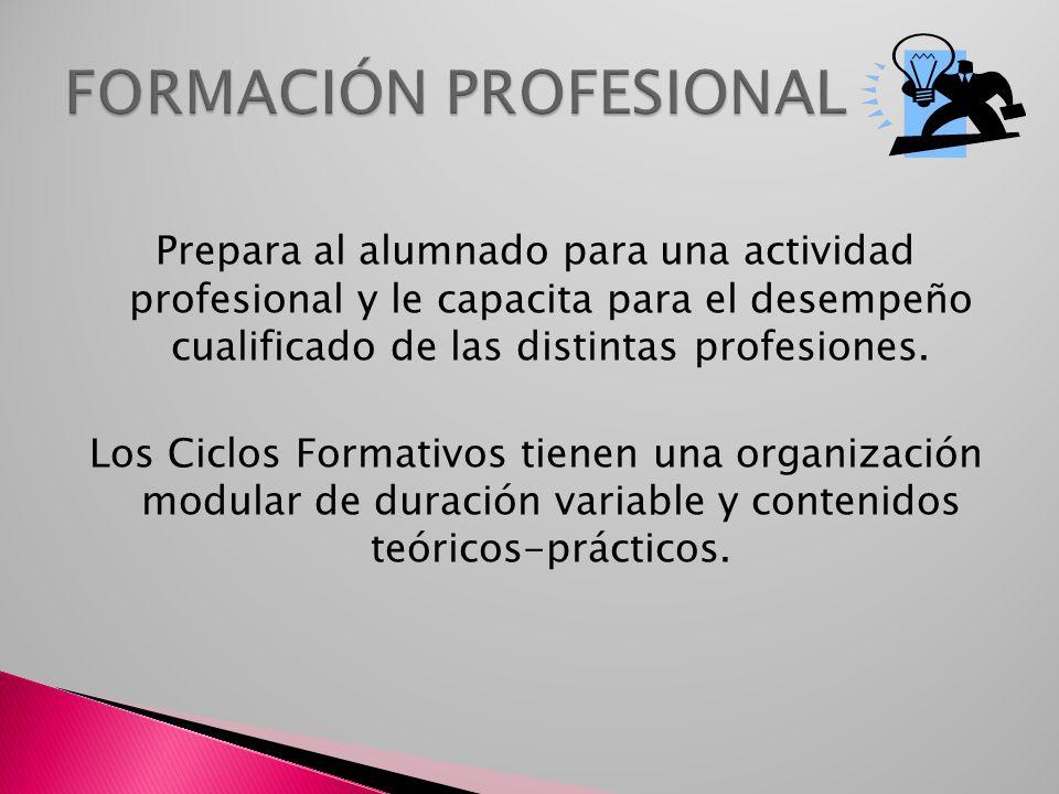 Prepara al alumnado para una actividad profesional y le capacita para el desempeño cualificado de las distintas profesiones. Los Ciclos Formativos tie