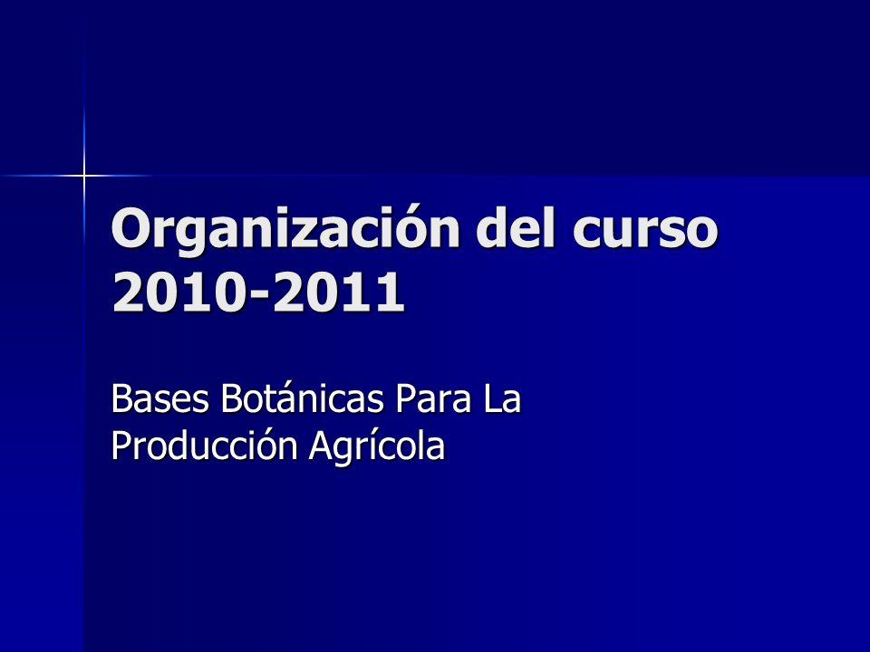 Organización del curso 2010-2011 Bases Botánicas Para La Producción Agrícola