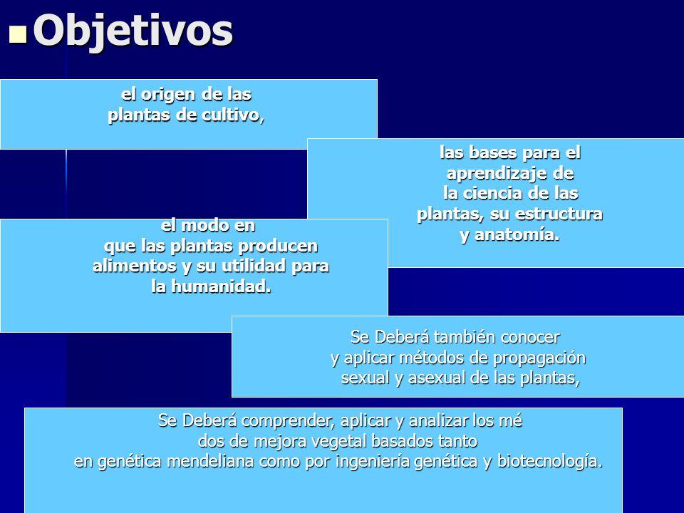 Objetivos Objetivos el origen de las plantas de cultivo, las bases para el aprendizaje de la ciencia de las plantas, su estructura y anatomía. el modo