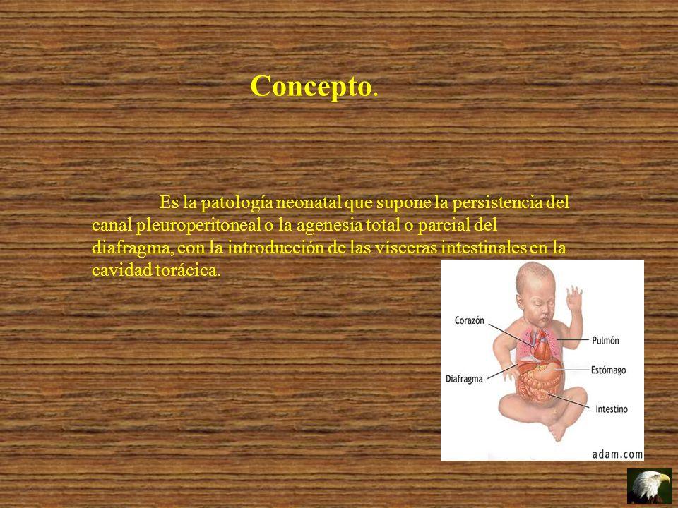 Concepto. Es la patología neonatal que supone la persistencia del canal pleuroperitoneal o la agenesia total o parcial del diafragma, con la introducc
