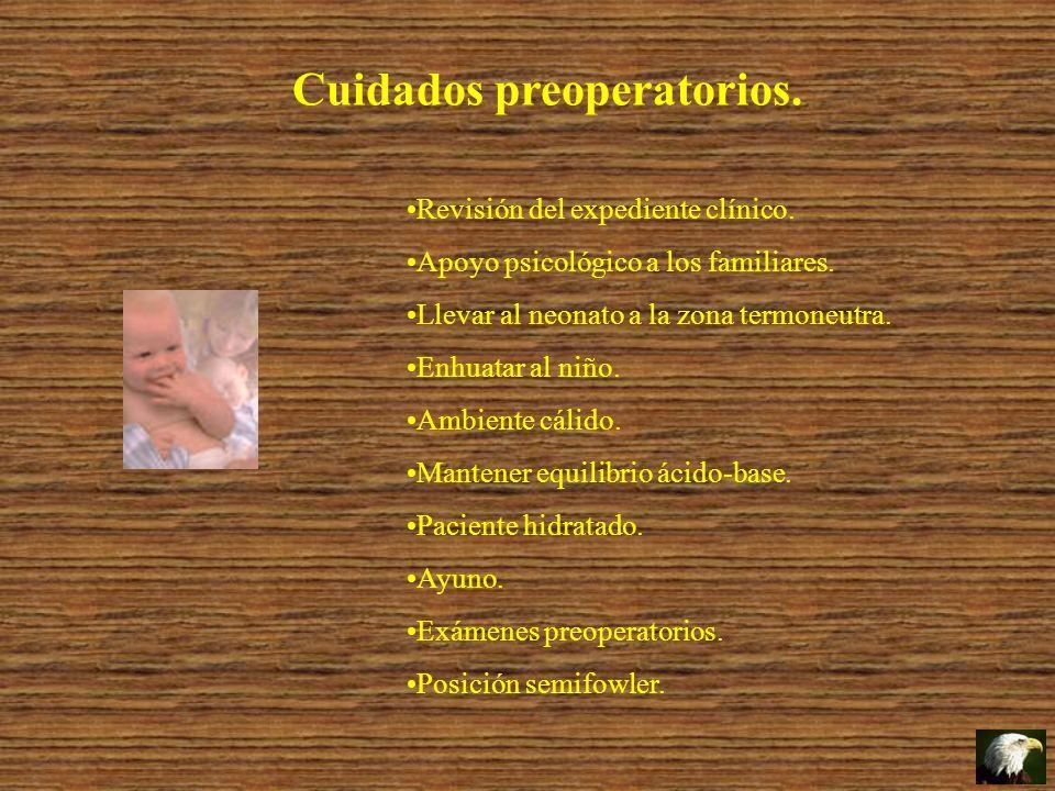 Cuidados preoperatorios. Revisión del expediente clínico. Apoyo psicológico a los familiares. Llevar al neonato a la zona termoneutra. Enhuatar al niñ