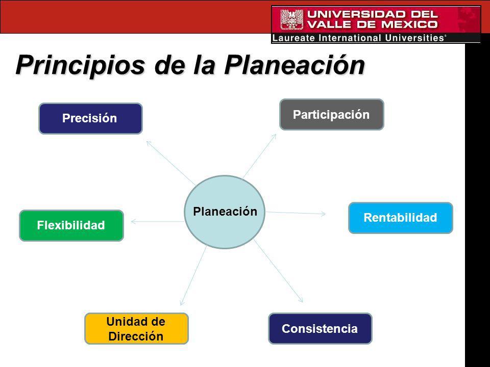 Principios de la Planeación Planeación Precisión Flexibilidad Unidad de Dirección Consistencia Rentabilidad Participación
