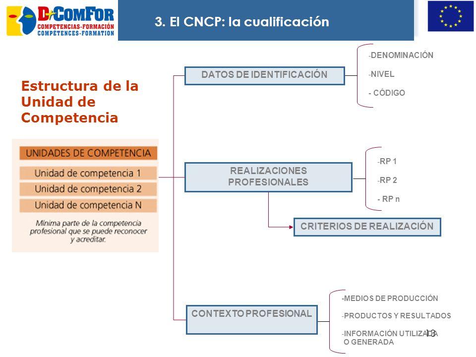 12 Estructura de la Cualificación No indica categoría profesional, se relaciona con la función principal y es reconocible en el sector Tipo de organiz