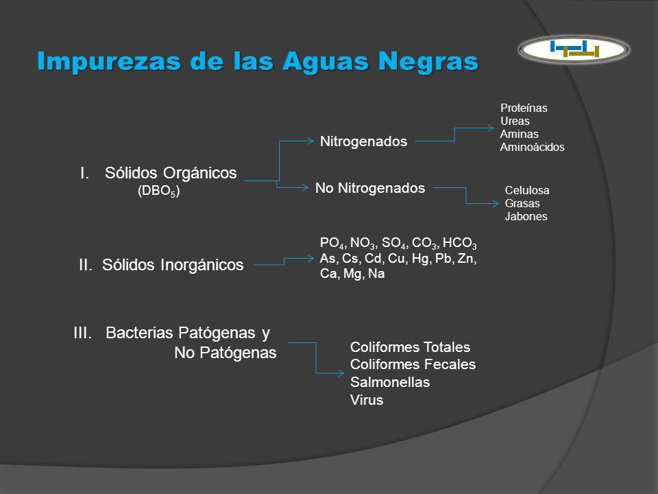 Impurezas de las Aguas Negras I.Sólidos Orgánicos (DBO 5 ) Nitrogenados No Nitrogenados Proteínas Ureas Aminas Aminoácidos Celulosa Grasas Jabones II.
