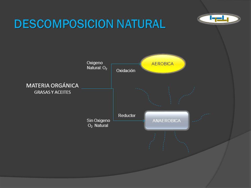 DESCOMPOSICION NATURAL AEROBICA ANAEROBICA MATERIA ORGÁNICA GRASAS Y ACEITES Oxigeno Natural: O 2 Sin Oxigeno O 2 Natural Oxidación Reductor