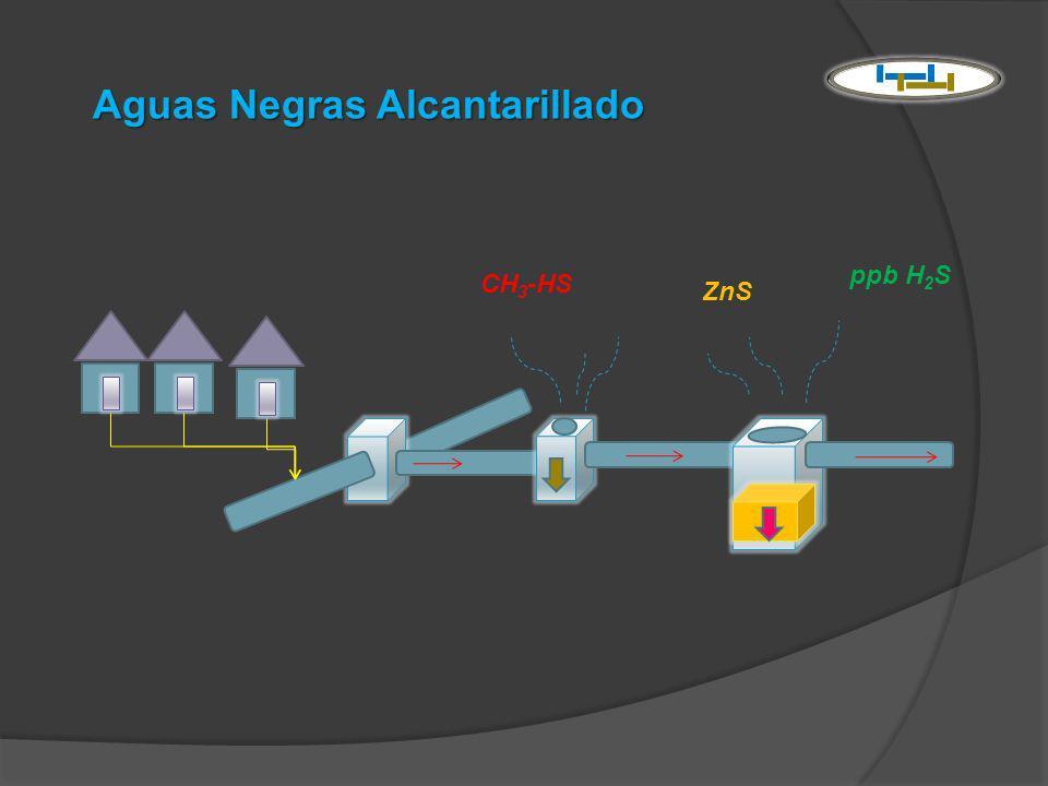 Aguas Negras Alcantarillado ppb H 2 S ZnS CH 3 -HS