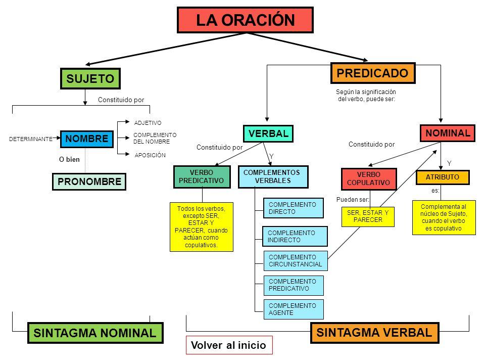 LA ORACIÓN PREDICADO Constituido por DETERMINANTE NOMBRE ADJETIVO COMPLEMENTO DEL NOMBRE Constituido por VERBO PREDICATIVO COMPLEMENTOS VERBALES COMPL