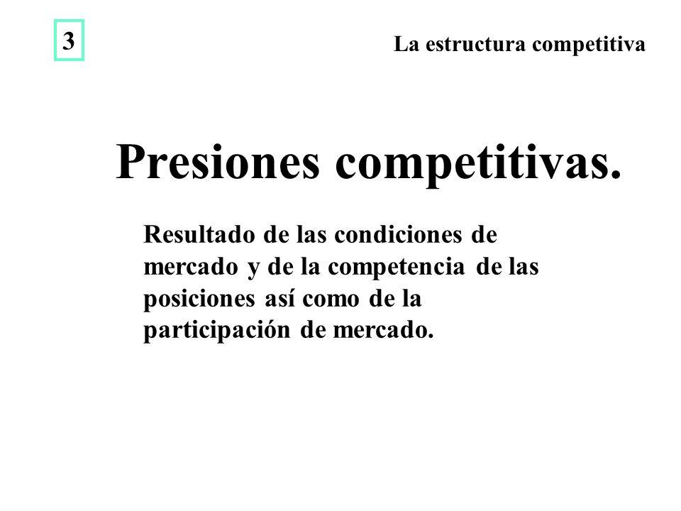 La estructura competitiva Resultado de las condiciones de mercado y de la competencia de las posiciones así como de la participación de mercado.