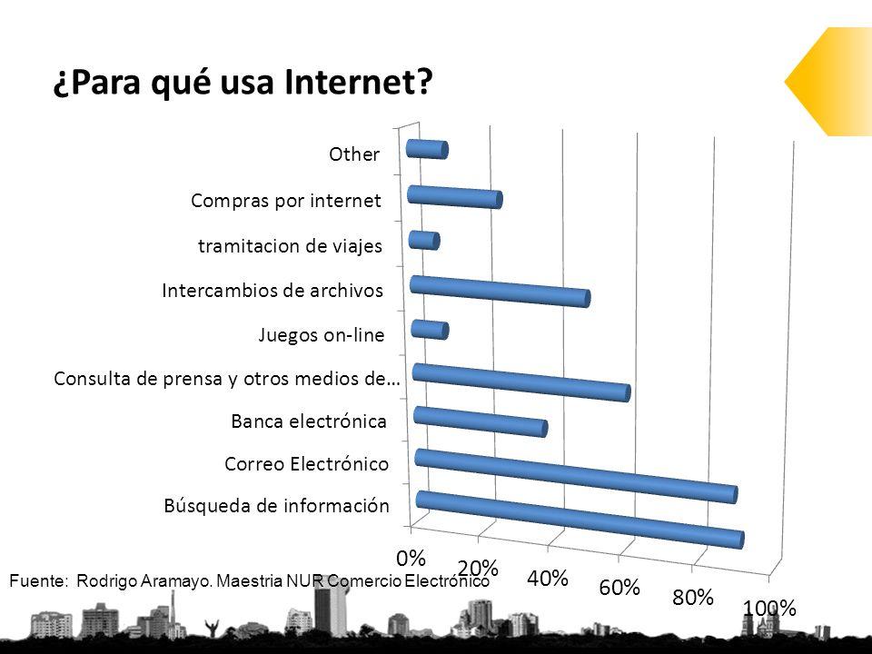 ¿Para qué usa Internet