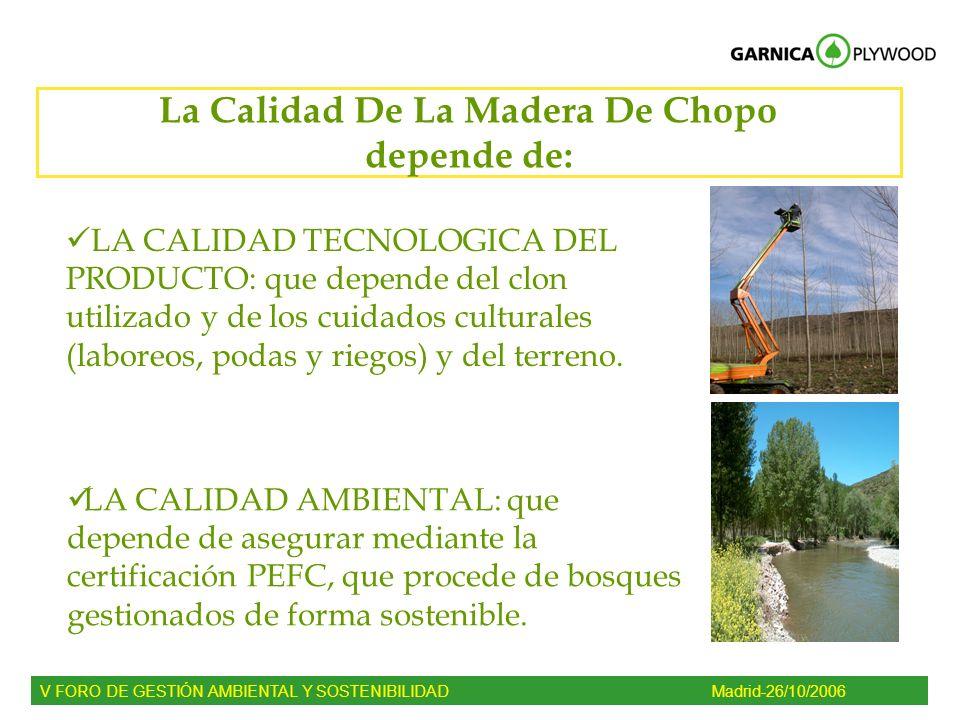 La Calidad De La Madera De Chopo depende de: LA CALIDAD TECNOLOGICA DEL PRODUCTO: que depende del clon utilizado y de los cuidados culturales (laboreo