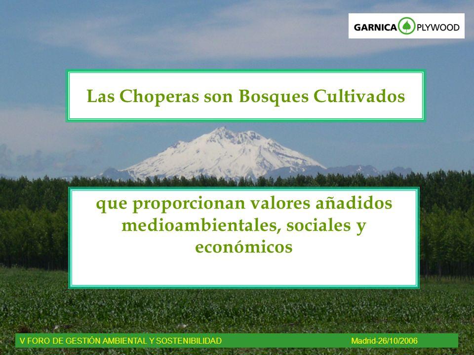 que proporcionan valores añadidos medioambientales, sociales y económicos V FORO DE GESTIÓN AMBIENTAL Y SOSTENIBILIDADMadrid-26/10/2006 Las Choperas s