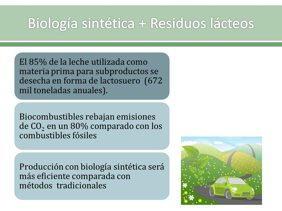 El 85% de la leche utilizada como materia prima para subproductos se desecha en forma de lactosuero (672 mil toneladas anuales). Biocombustibles rebaj