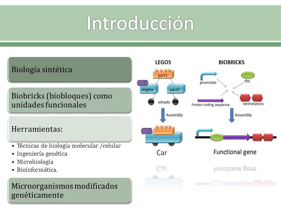 Biología sintética Biobricks (biobloques) como unidades funcionales Herramientas: Técnicas de biología molecular /celular Ingeniería genética Microbio
