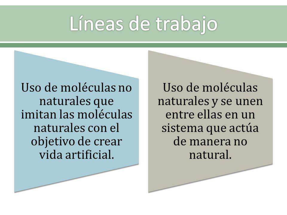 Uso de moléculas no naturales que imitan las moléculas naturales con el objetivo de crear vida artificial. Uso de moléculas naturales y se unen entre