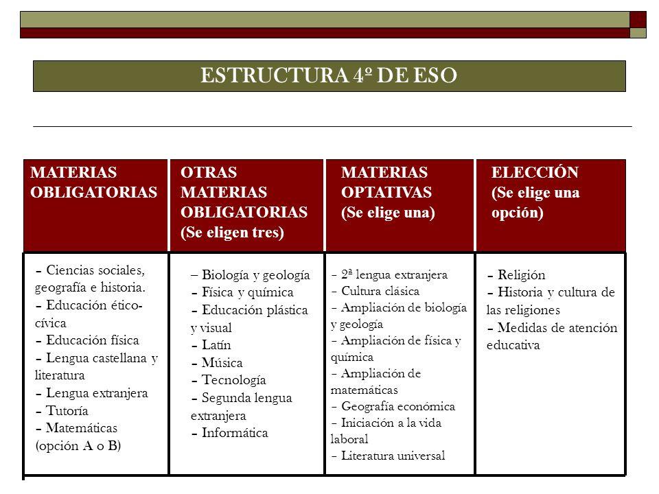 ESTRUCTURA 4º DE ESO – Ciencias sociales, geografía e historia. – Educación ético- cívica – Educación física – Lengua castellana y literatura – Lengua