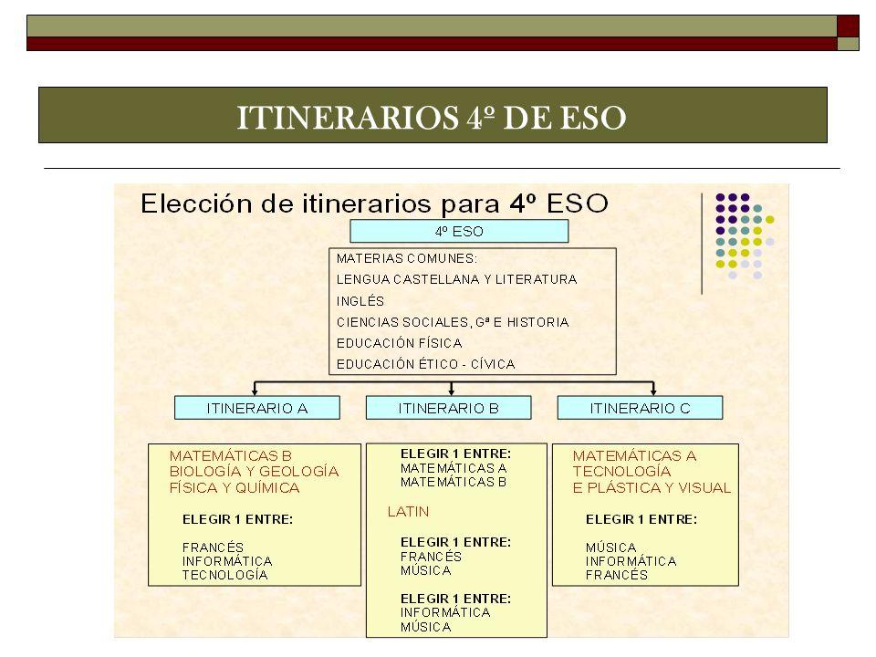 ITINERARIOS 4º DE ESO
