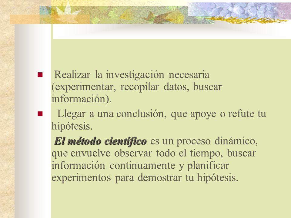 Realizar la investigación necesaria (experimentar, recopilar datos, buscar información).