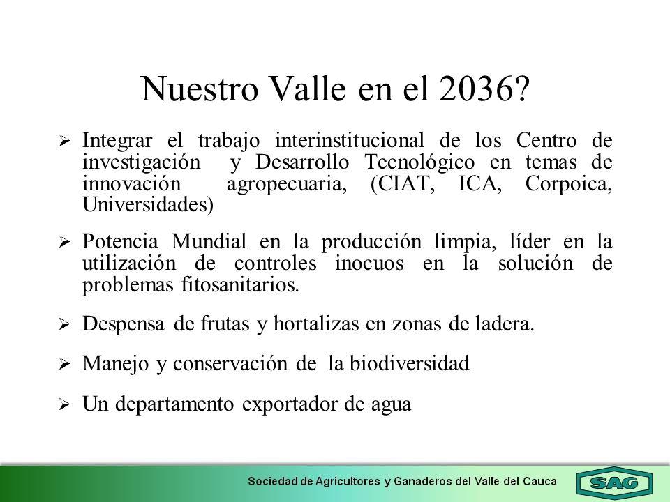 Nuestro Valle en el 2036? Integrar el trabajo interinstitucional de los Centro de investigación y Desarrollo Tecnológico en temas de innovación agrope