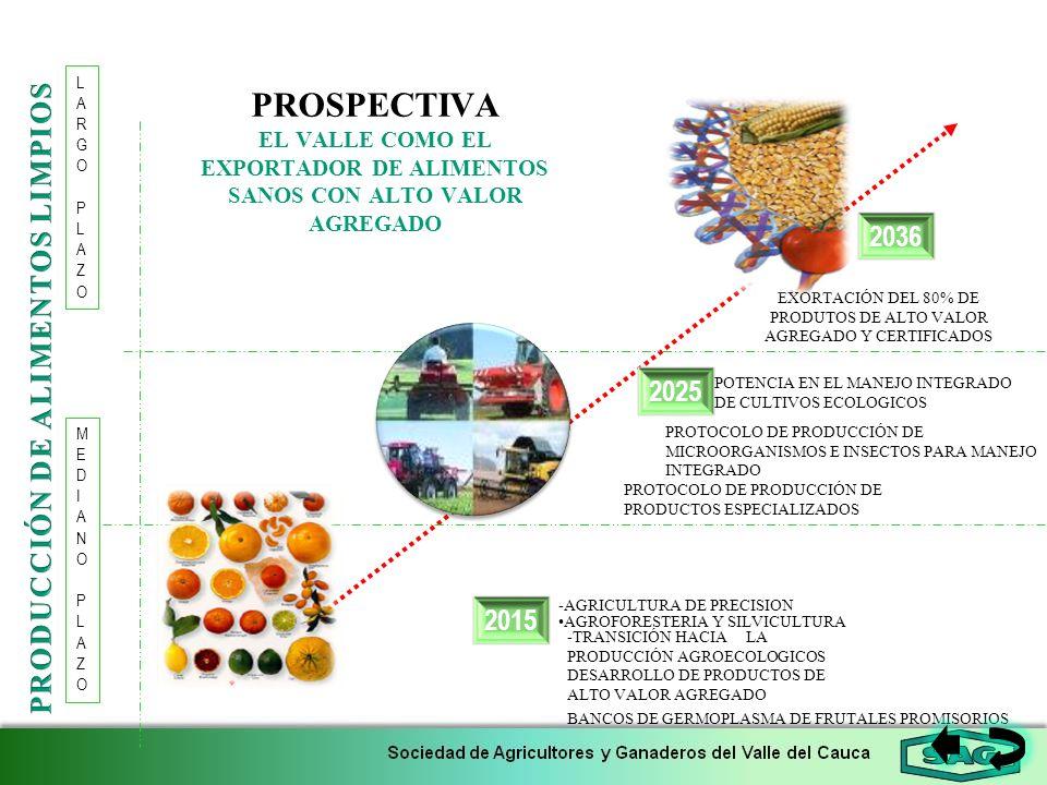 PROSPECTIVA EL VALLE COMO EL EXPORTADOR DE ALIMENTOS SANOS CON ALTO VALOR AGREGADO 2015 2036 LARGOPLAZOLARGOPLAZO 2025 AGROFORESTERIA Y SILVICULTURA E