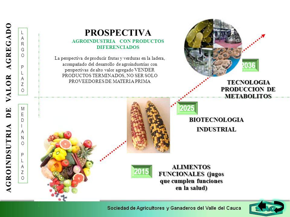 PROSPECTIVA AGROINDUSTRIA CON PRODUCTOS DIFERENCIADOS 2015 2036 LARGOPLAZOLARGOPLAZO 2025 MEDIANOPLAZOMEDIANOPLAZO La perspectiva de producir frutas y