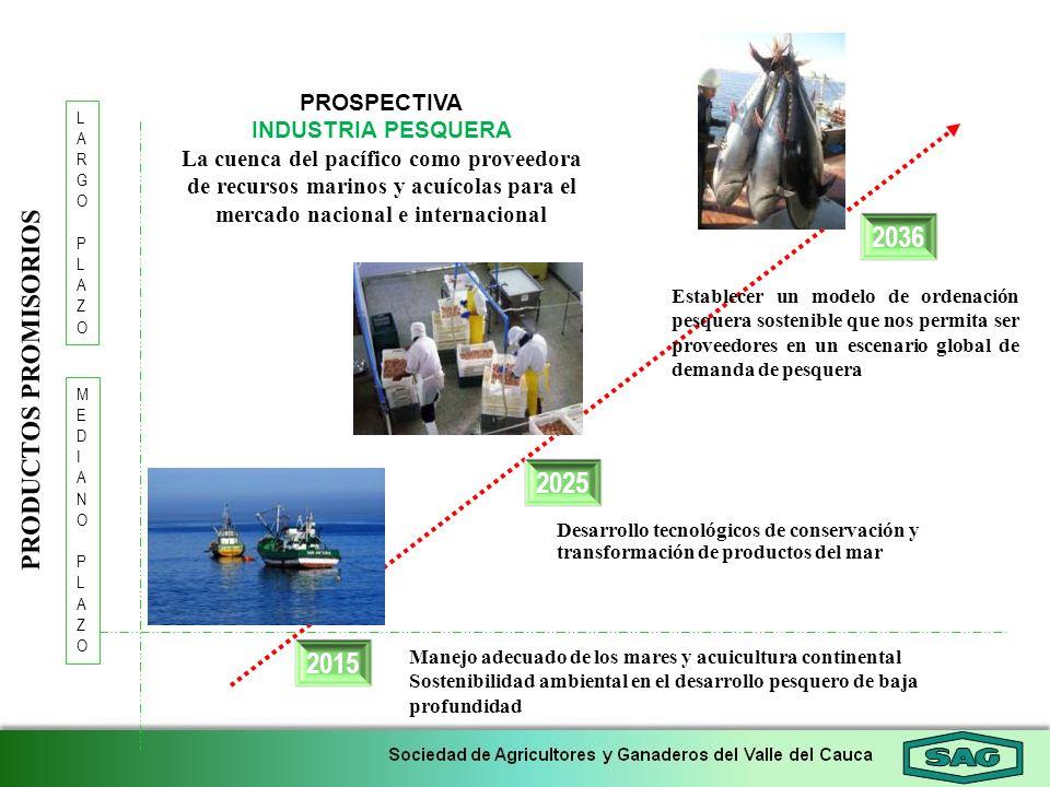 2015 2036 LARGOPLAZOLARGOPLAZO 2025 MEDIANOPLAZOMEDIANOPLAZO PROSPECTIVA INDUSTRIA PESQUERA La cuenca del pacífico como proveedora de recursos marinos