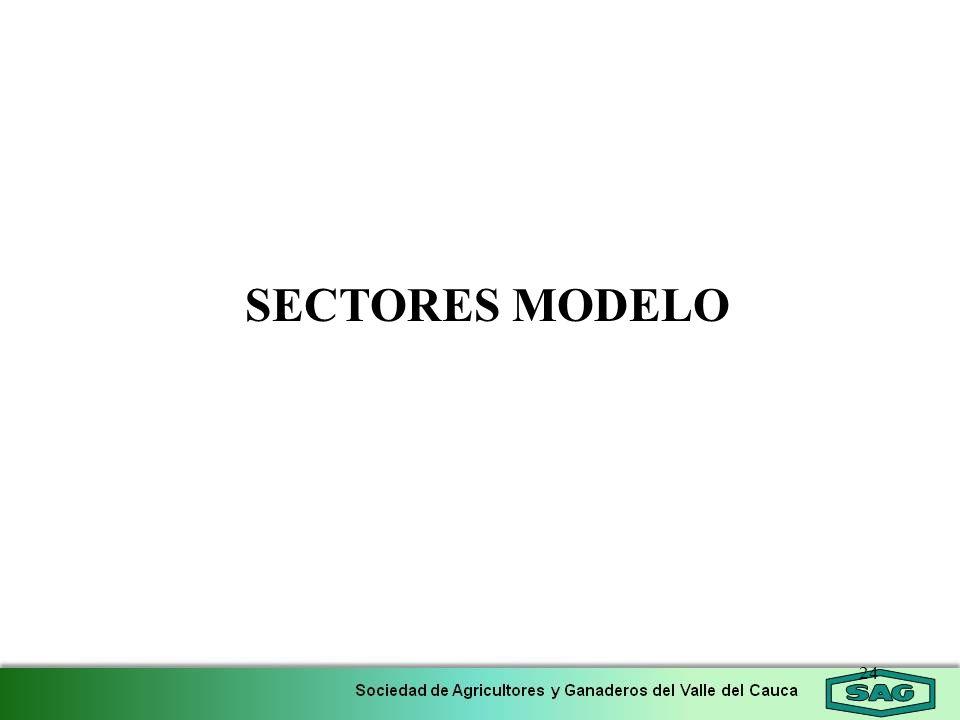 24 SECTORES MODELO