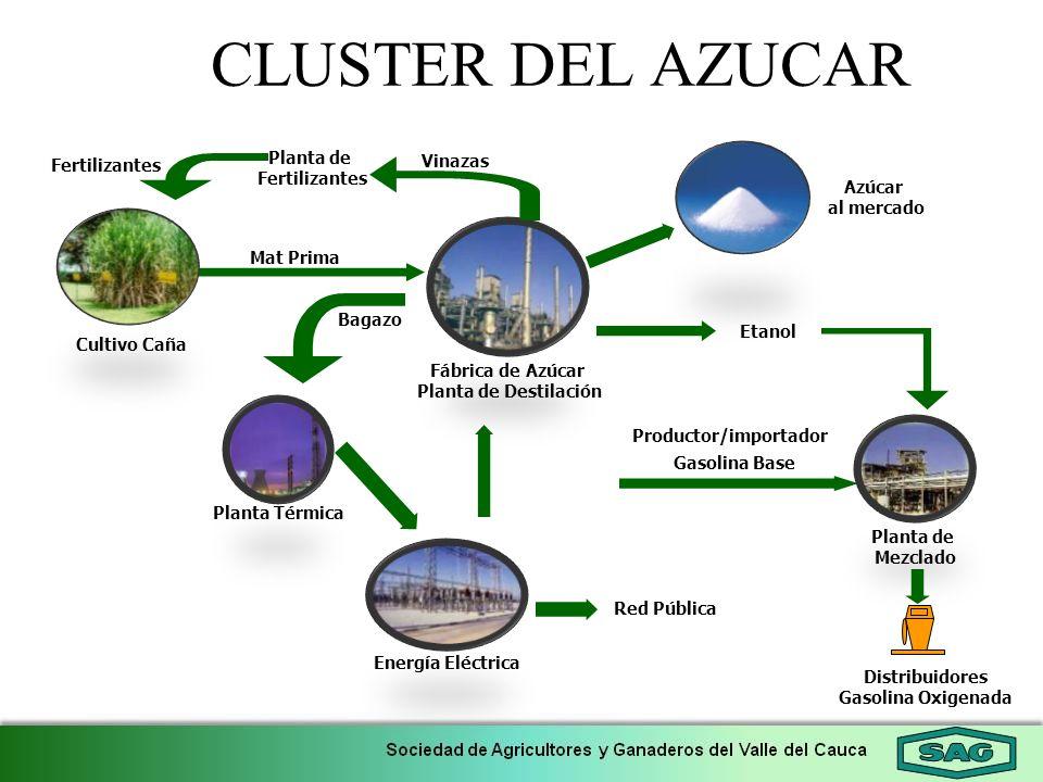 Planta de Fertilizantes Gasolina Base Distribuidores Gasolina Oxigenada Cultivo Caña Fábrica de Azúcar Planta de Destilación Bagazo Planta de Mezclado
