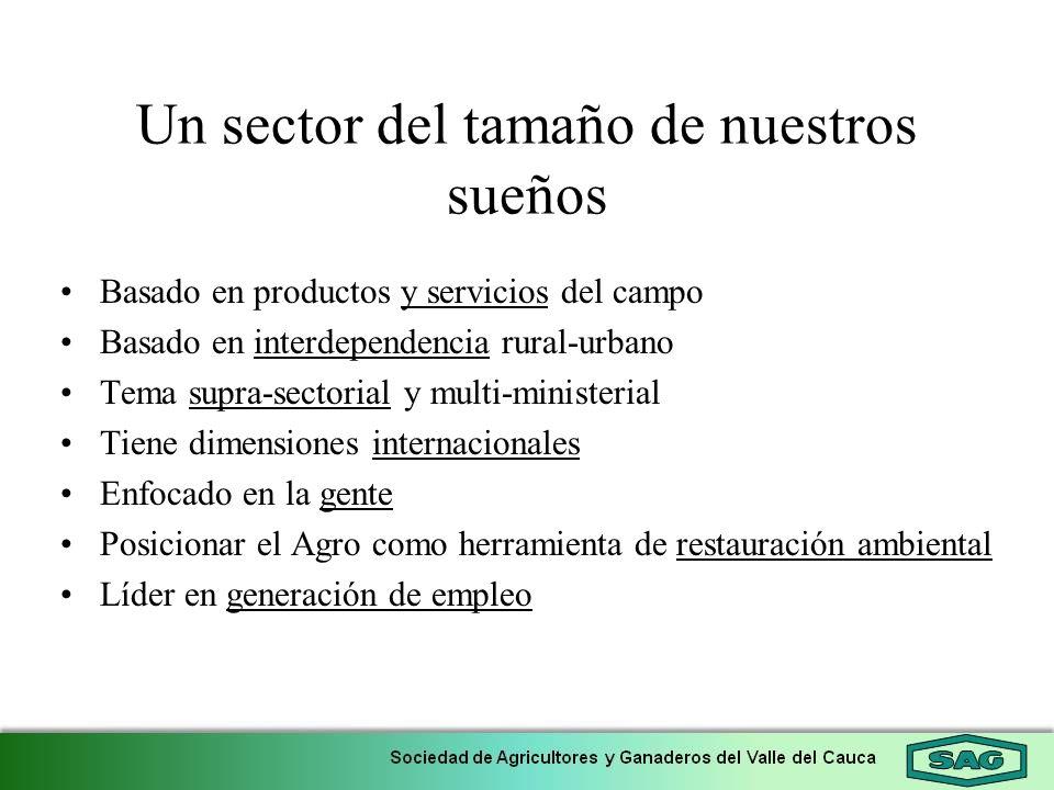 Un sector del tamaño de nuestros sueños Basado en productos y servicios del campo Basado en interdependencia rural-urbano Tema supra-sectorial y multi