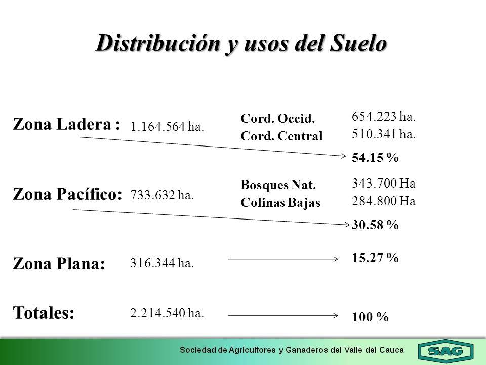 Distribución y usos del Suelo 654.223 ha. 510.341 ha. 54.15 % 343.700 Ha 284.800 Ha 30.58 % 15.27 % 100 % Cord. Occid. Cord. Central Bosques Nat. Coli