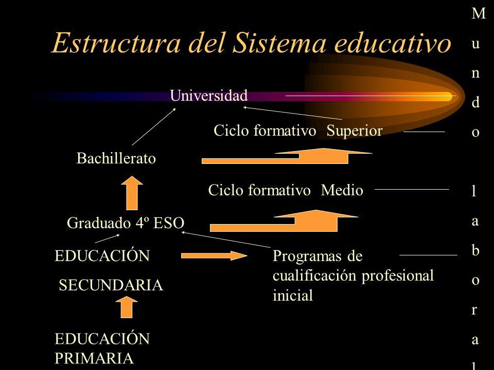 Estructura del Sistema educativo Universidad Bachillerato Ciclo formativo Superior Ciclo formativo Medio EDUCACIÓN SECUNDARIA EDUCACIÓN PRIMARIA Progr