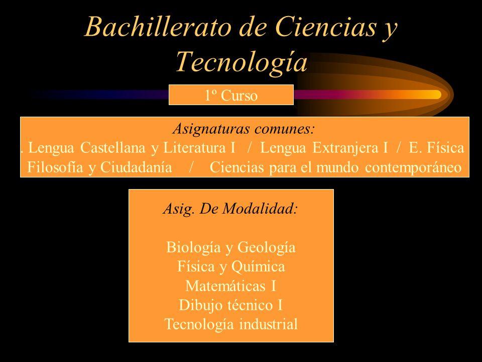 Bachillerato de Ciencias y Tecnología 1º Curso Asignaturas comunes:. Lengua Castellana y Literatura I / Lengua Extranjera I / E. Física Filosofía y Ci