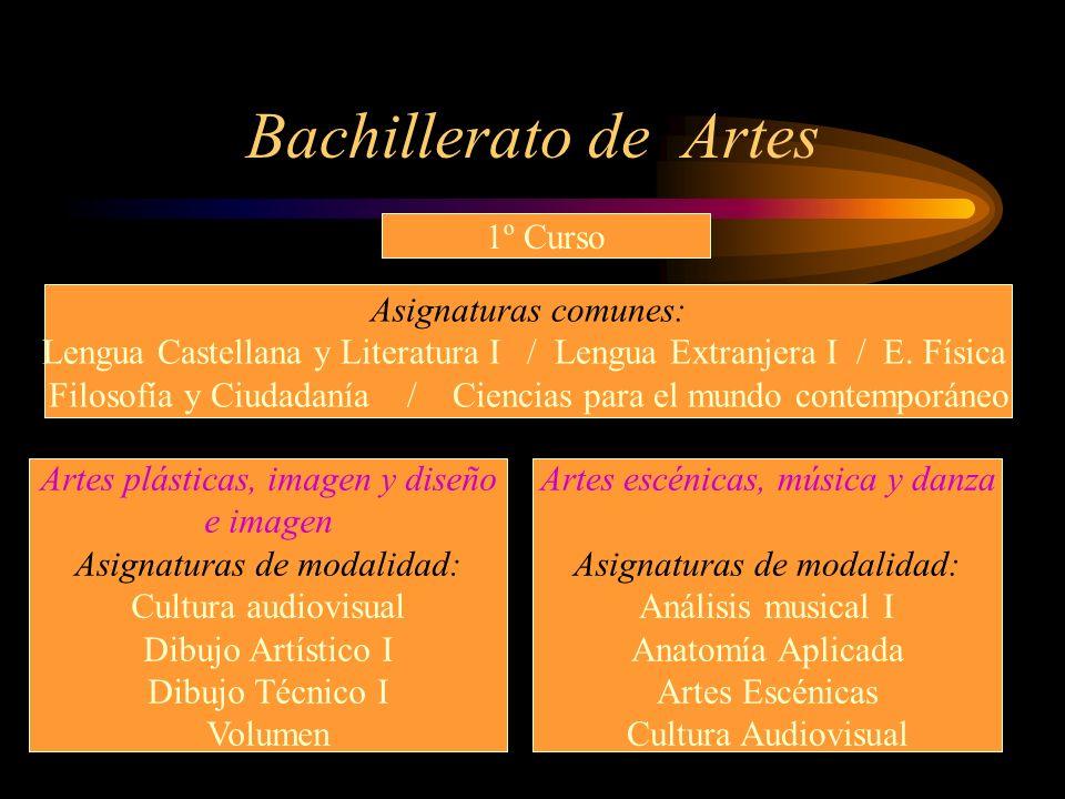 Bachillerato de Artes 1º Curso Asignaturas comunes: Lengua Castellana y Literatura I / Lengua Extranjera I / E. Física Filosofía y Ciudadanía / Cienci