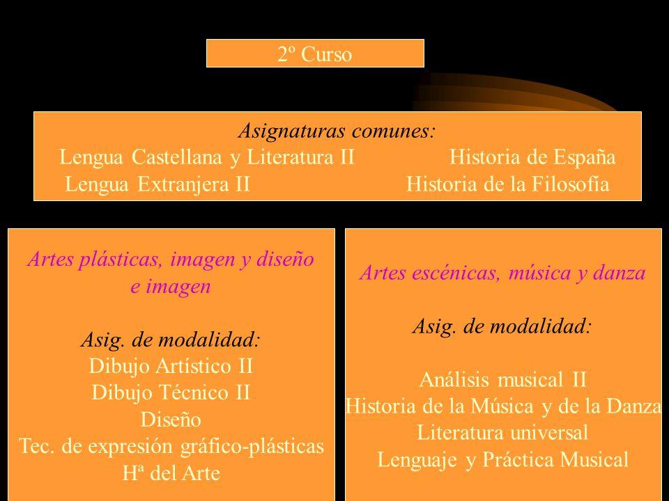 2º Curso Asignaturas comunes: Lengua Castellana y Literatura II Historia de España Lengua Extranjera II Historia de la Filosofía Artes plásticas, imag