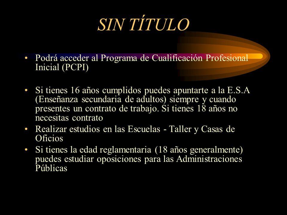SIN TÍTULO Podrá acceder al Programa de Cualificación Profesional Inicial (PCPI) Si tienes 16 años cumplidos puedes apuntarte a la E.S.A (Enseñanza se