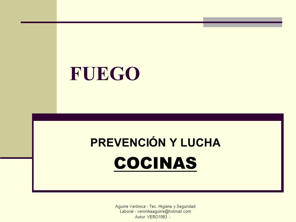 Autor: VERO1983 - Aguirre Verónica - Tec. Higiene y Seguridad Laboral - veronikaaguirre@hotmail.com FUEGO PREVENCIÓN Y LUCHA COCINAS