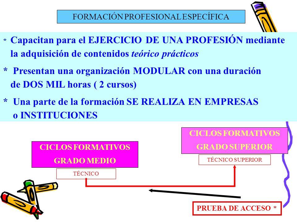 FORMACIÓN PROFESIONAL ESPECÍFICA * Capacitan para el EJERCICIO DE UNA PROFESIÓN mediante la adquisición de contenidos teórico prácticos * Presentan un