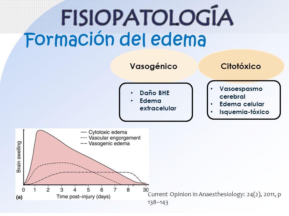 Formación del edema VasogénicoCitotóxico Daño BHE Edema extracelular Vasoespasmo cerebral Edema celular Isquemia-tóxico Current Opinion in Anaesthesio